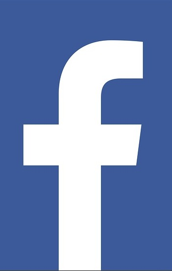 Facebook and other social media are hollowing out traditional news sources. The federal government may act but we can too